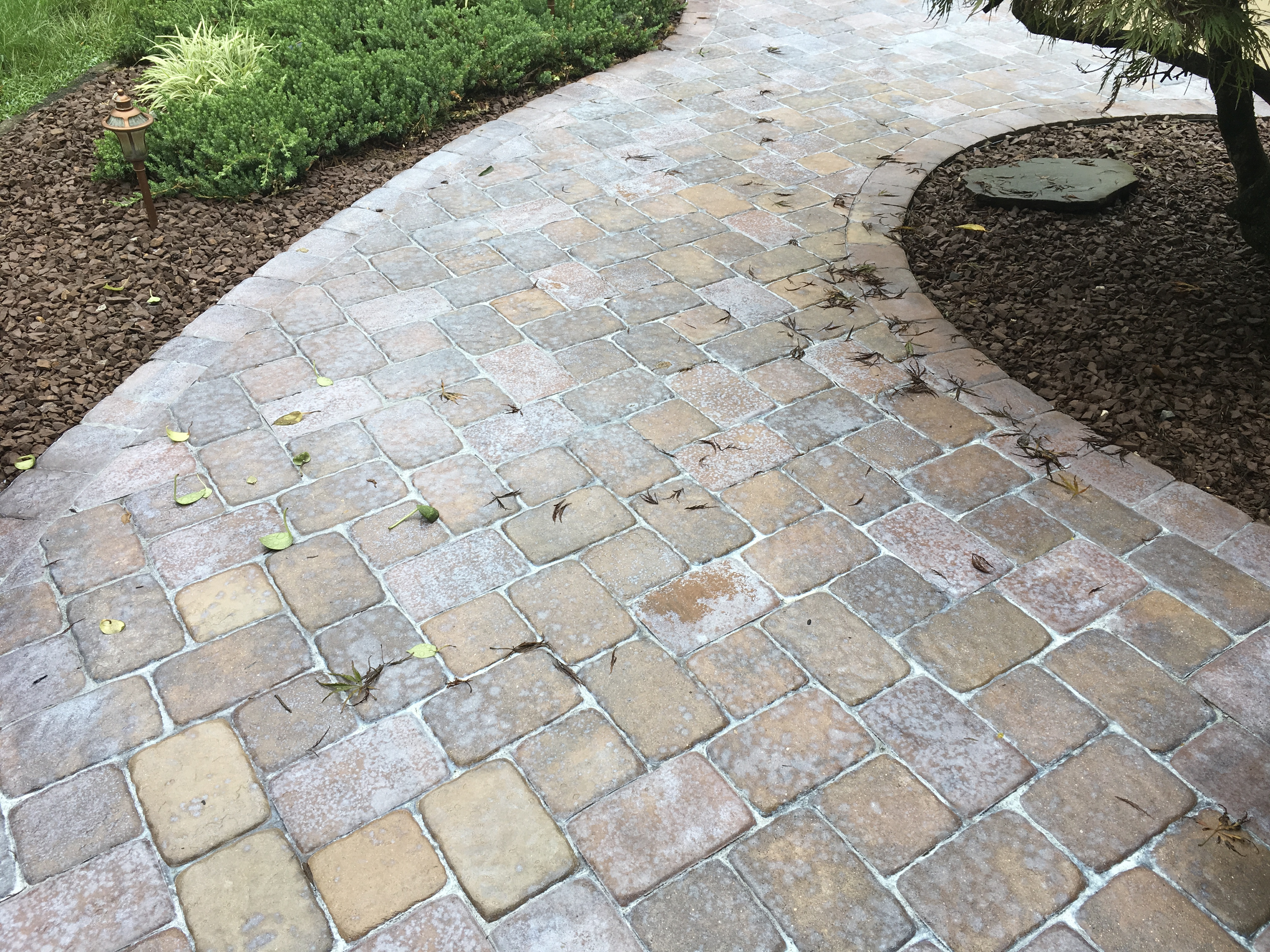Stamped Concrete Or Paver Sealer Turned White Concrete